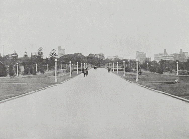 Hyde Park in the 1930's the avenue removed and replaced during City Circle railway construction (Source : CoS Photo Archives)