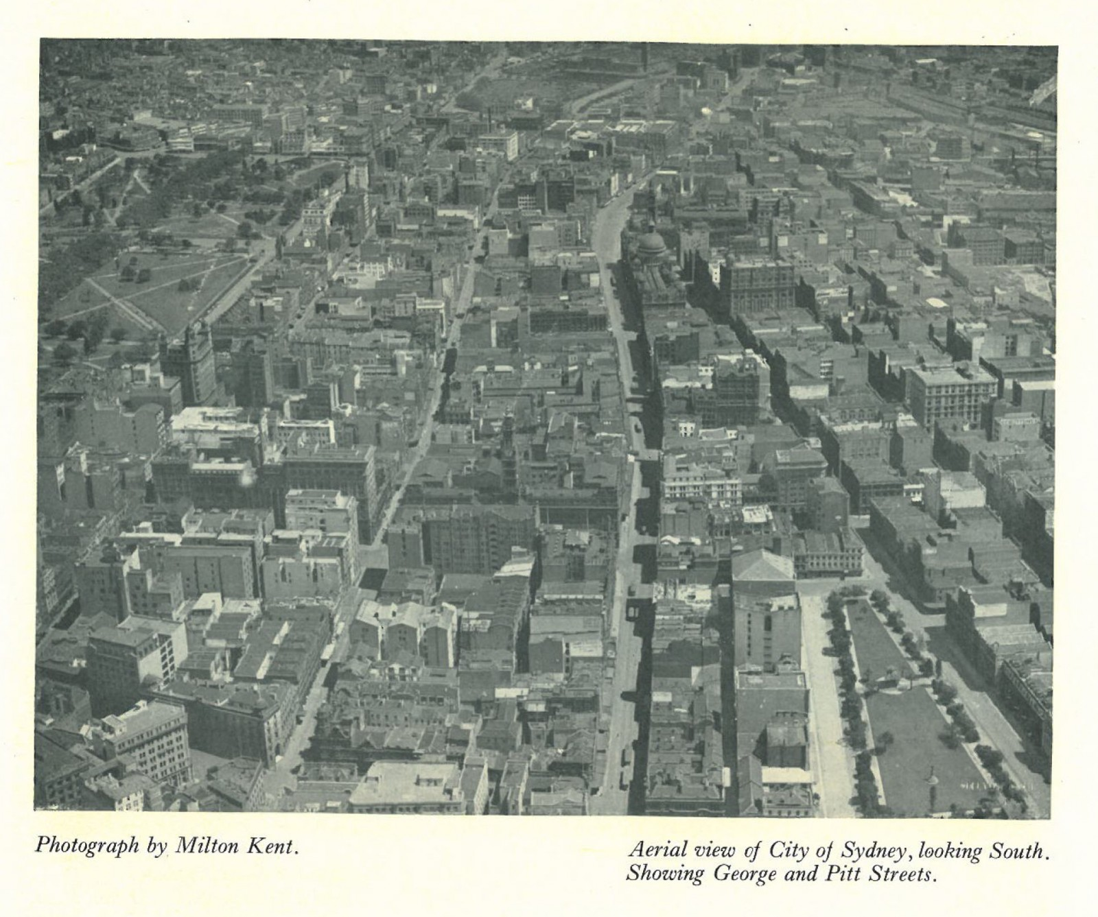 This aerial view of the City of Sydney circa 1920's. Note the young but establishing planting in Wynyard Park in the lower right, Hyde Park in the upper left, but the absence of any other street planting in most other city streets. (Source: Australia Beautiful 1928, Photograph by Milton Kent)